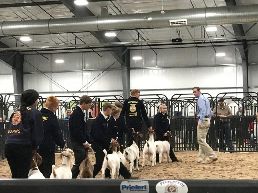 Thunderbird Nation Takes Over County Fair